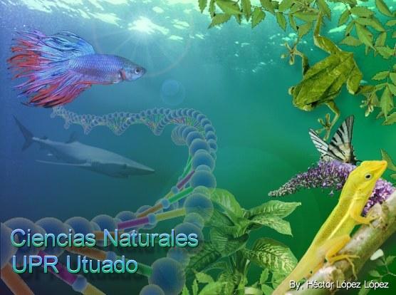 Imágen Ciencias Naturales UPR Utuado